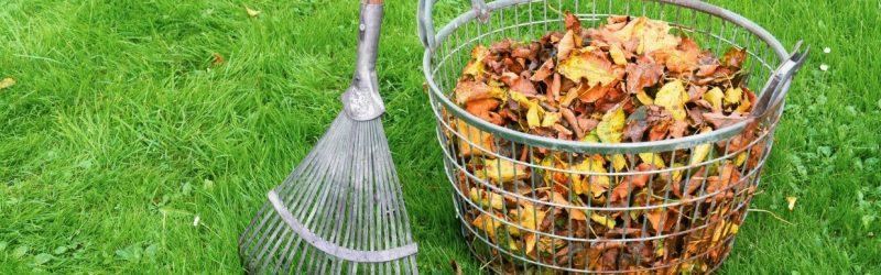 Bij tuinonderhoud in Amersfoort wordt het tuinafval